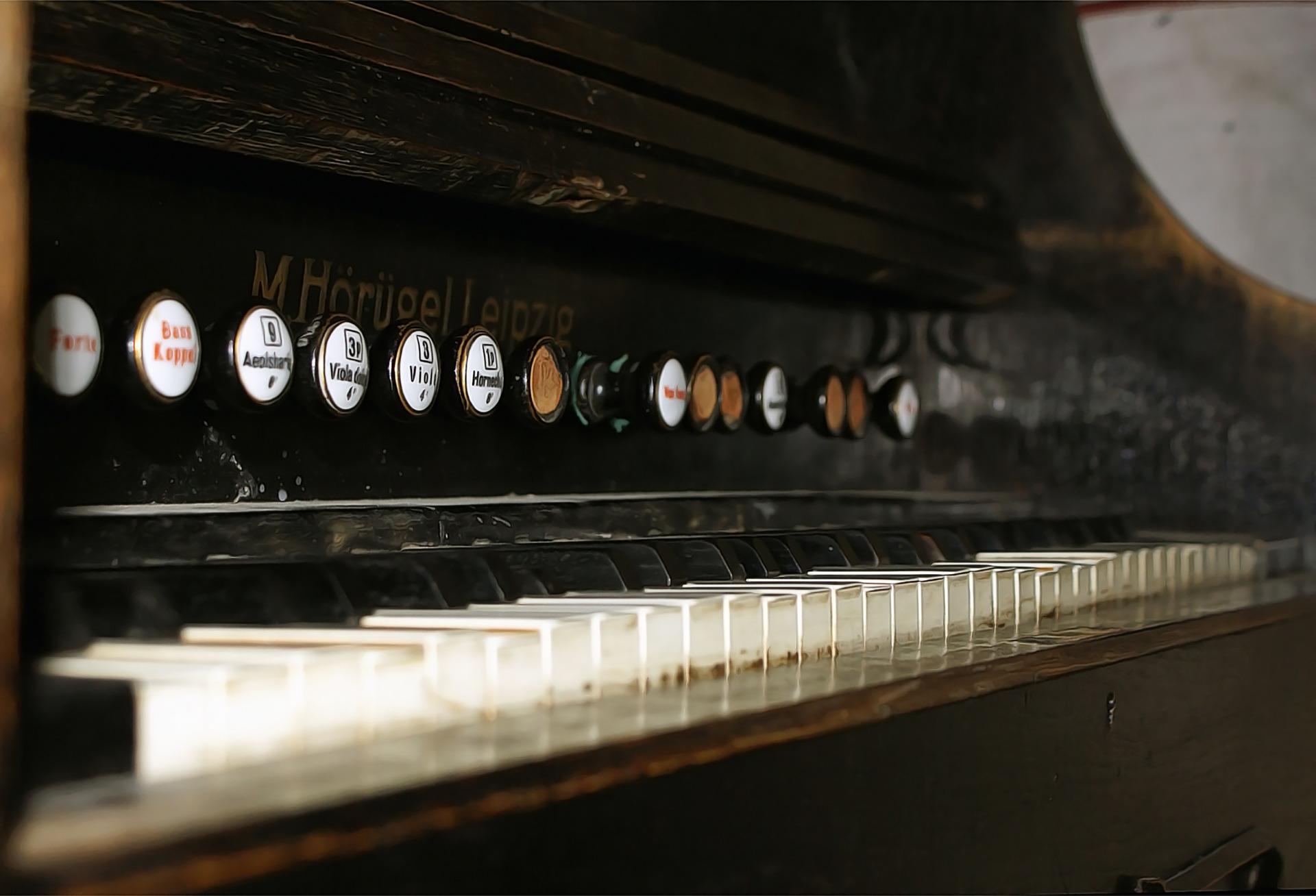 Orgel: Test & Empfehlungen (01/21)